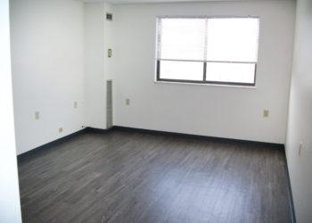 Baldwin Living Area
