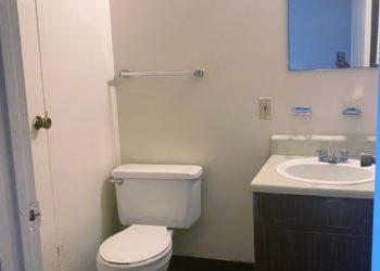 Oak Forest Bathroom