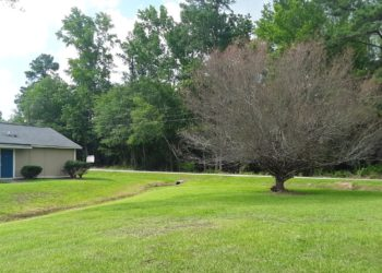 Pinehaven Villas Exterior