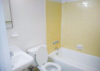 Rip Van Winkle Bathroom