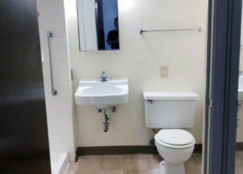 Rose of Sharon Bathroom
